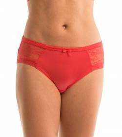 Triumph Body Chic Lace Hipster - 4