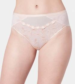 Triumph Wild Rose Florale Maxi Brief - 1